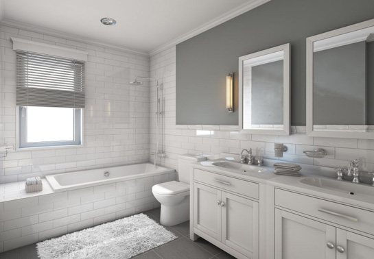 Clean Your Bathroom Once And For All The Shelving Store - How to clean your bathroom